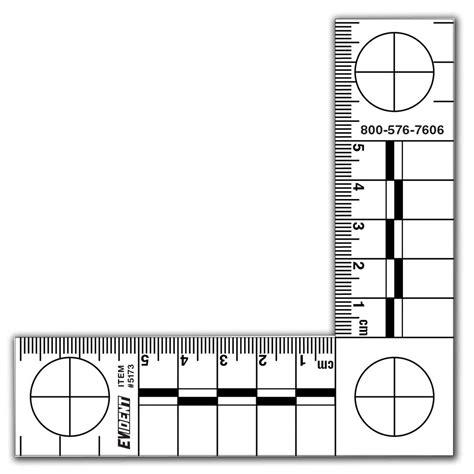 Printable Evidence Ruler   shopevident com