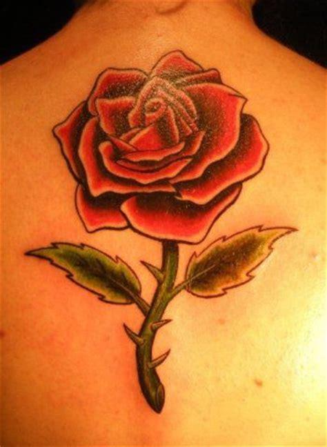 imagenes de tatuajes de rosas rojas im 225 genes de rosas rojas blancas azules negras ramos y