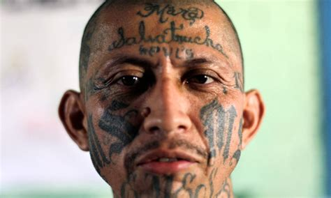 ms 13 gang tattoos united states classifies ms 13 a global
