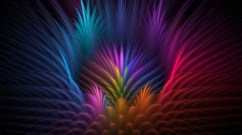 colorful feather feathers colorful petals hd artist 4k wallpapers images