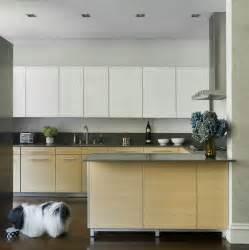 Modern kitchen cabinet pulls modern kitchen flat panel cabinet