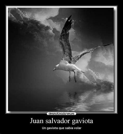 imagenes sensoriales de juan salvador gaviota juan salvador gaviota desmotivaciones