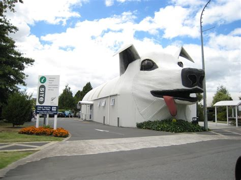 inside the world of animal architecture from a casino that welcome culturemap houston 25 animal shaped buildings from around the world atlas obscura