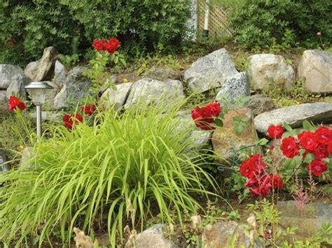 gartengestaltung steingarten steingarten anlegen garten de hat die passende anleitung