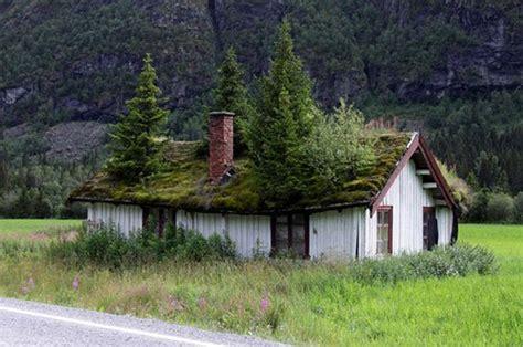 tetto giardino consumomeno costruire futuro rispettando l ambiente