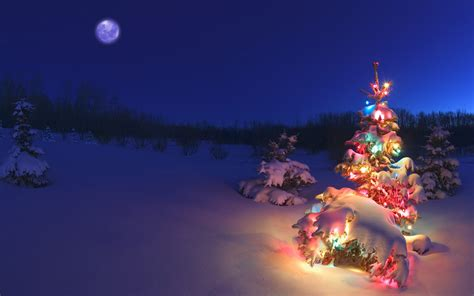 merry christmas tree wallpaper   pixelstalknet