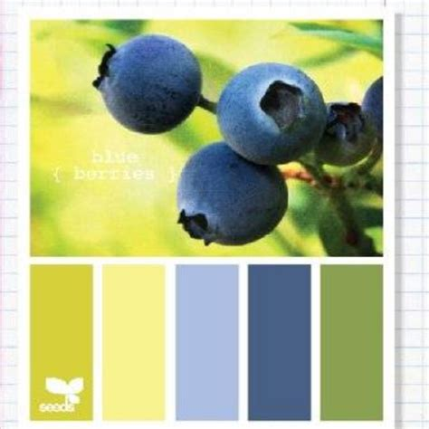 berry color blue berry color pallet colors that work well together pinterest