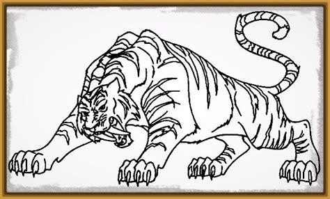 imagenes para dibujar tigres dibujos para colorear de tigres archivos imagenes de tigres