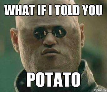 Potatoes Meme - potato i can count to potato know your meme