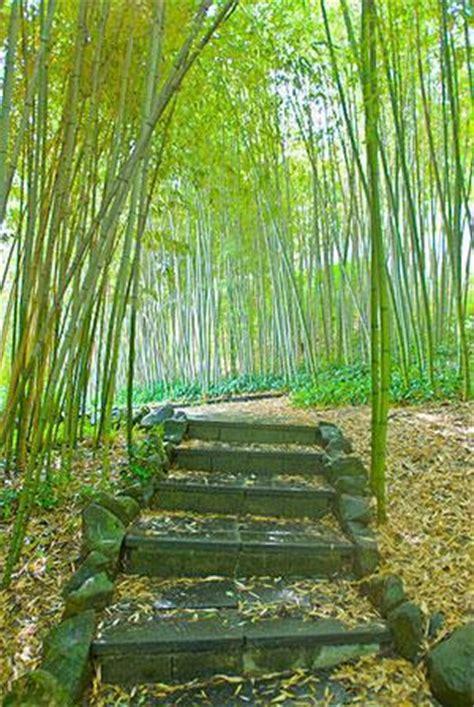 scala giardino gradini in giardino