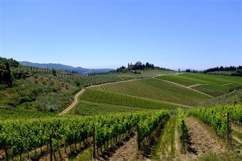 chianti siena chianti classico from florence to siena visit tuscany