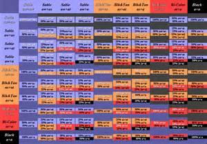 german shepherd color chart coat colors german shepherd forums