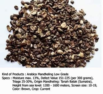 Arabica Mandheling Bijibubuk arabica mandheling low grade coffee beans buy coffee beans arabica coffee beans