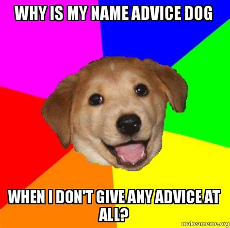 T Dog Memes - why is my name advice dog when i don t give any advice at