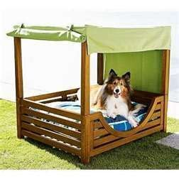 pet canopy bed canopy bed for dog spoil your pets pinterest pet
