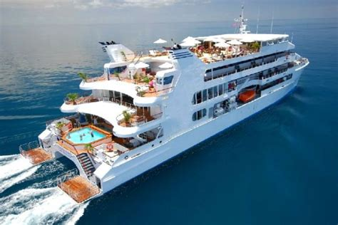catamaran dinner cruise miami five ultimate party yachts www yachtworld www
