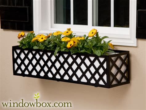 the lattice window box cage square design wrought iron - Metal Window Box Planters