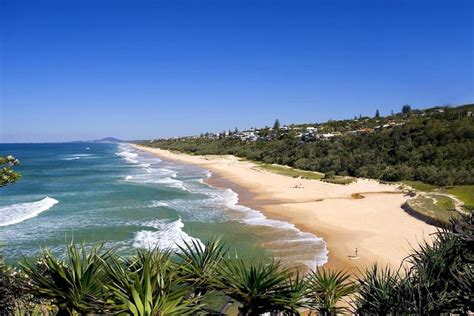 dolphin house noosa reviews of dolphins house in noosa