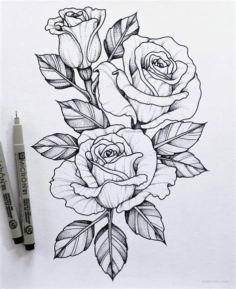 A Drawing Of A Flower by 45 Beautiful Flower Drawings And Realistic Color Pencil