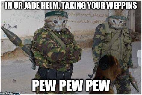 Soldier Meme - soldier cats imgflip