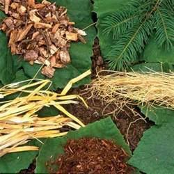 the best mulch types for your seasonal garden farm and garden grit magazine