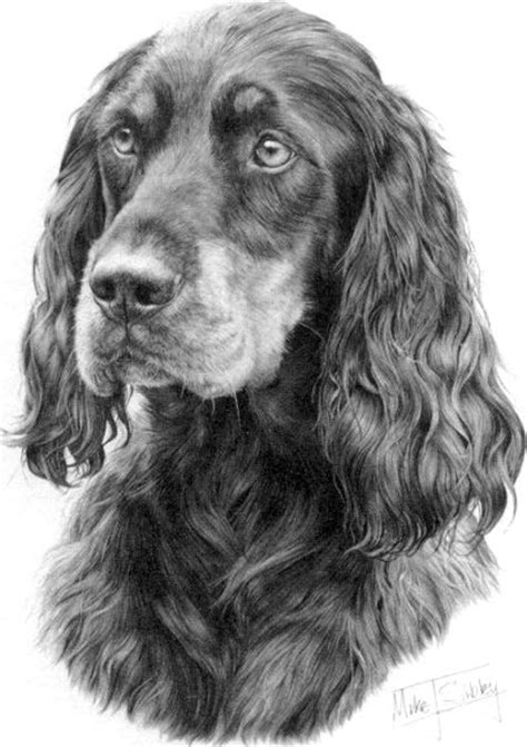setter dog drawing pin by janice hill on gordon setters pinterest