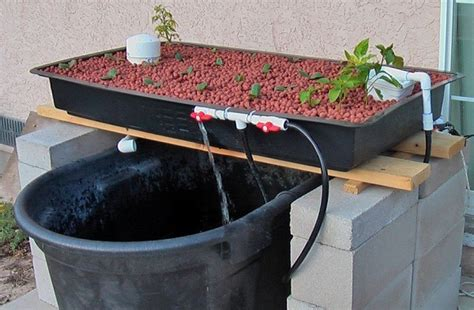 depth   aquaculture systems recirculation setup