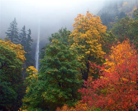 in fall fall colors adam sawyer