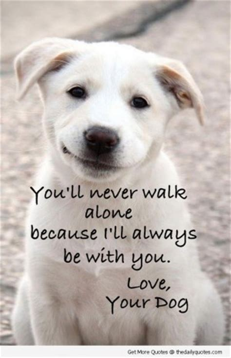 the lincoln chronicles puppy wisdom for happy living books poems and quotes about dogs quotesgram