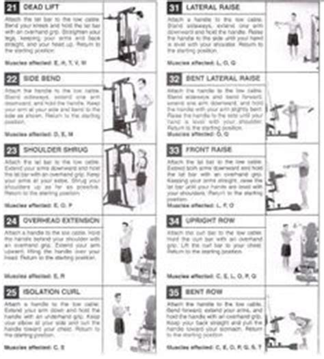 marcy home workout chart eoua