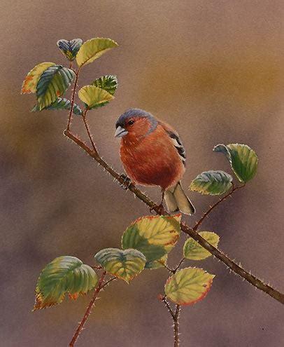 Lukisan H lukisan lukisan burung karya halbert aeng aeng