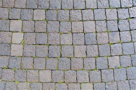 stock pavimenti roma sanpietrini pavimentazione tipica di roma italia