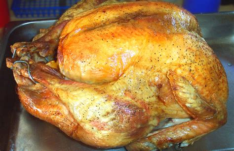 Klib Turkey Dec 01 187 lashings of turkey