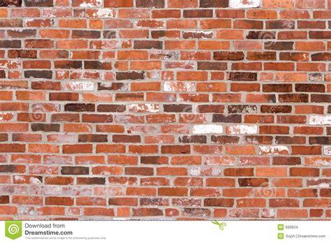 Bricks Wange Paradise 33042n brick wall stock images image 560834