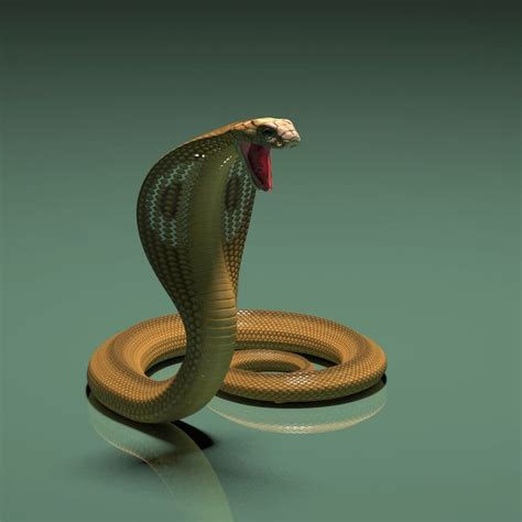 Kaos 3d Black Snake 1 S 1000 images about 3d model cobra snake on