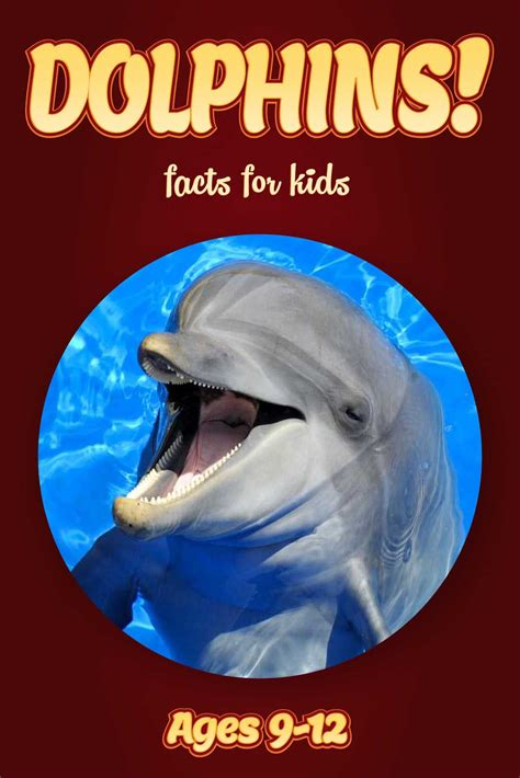 dolphins a kid s book of cool images and amazing facts about dolphins nature books for children series volume 5 books dolphin facts for nonfiction book