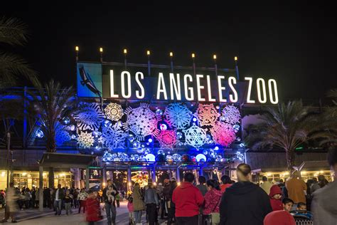 christmas lights in the san fernando valley la zoo lights sets zoo aglow with awe and wow from nov 17 jan 7 friday november 17