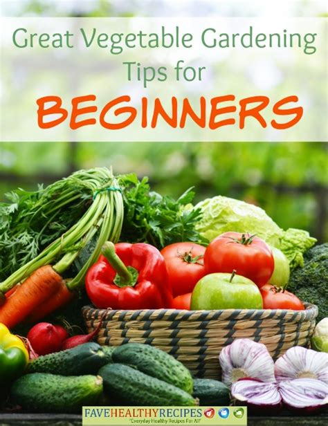 great garden ideas and tips for beginners