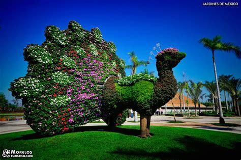 imagenes de jardines increibles jardines de m 233 xico en tequesquitengo morelos 1 incre 237 bles