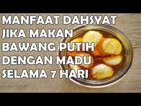 wow manfaat menakjubkan makan bawang putih  madu