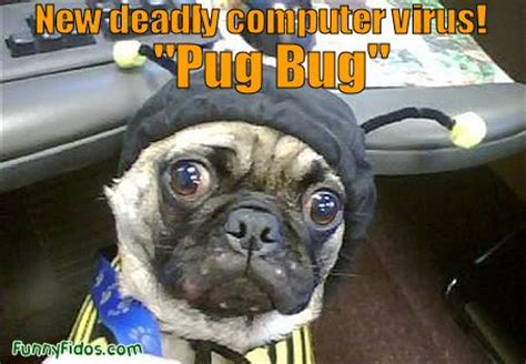 pug virus 187 new deadly computer virus