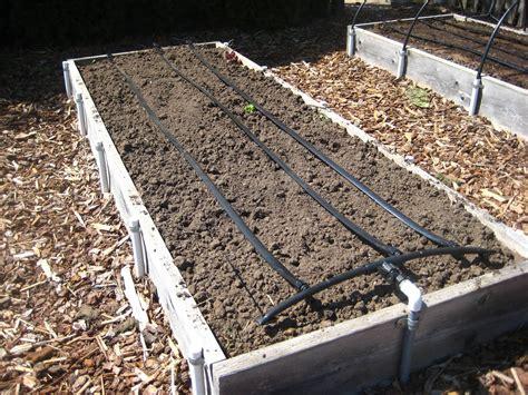 drip irrigation system susans   garden