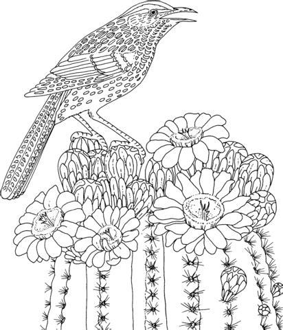cactus wren and saguaro blossom arizona state bird and