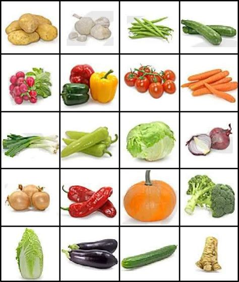 vegetables names images of vegetables and their names can you name the