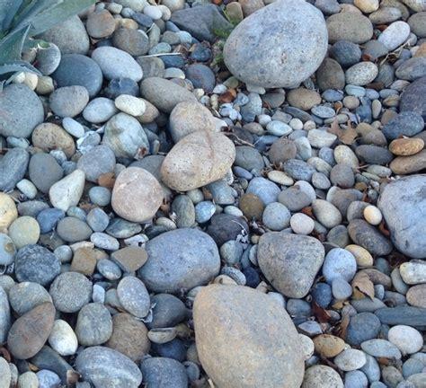 river rock gravel prices 28 images larger river