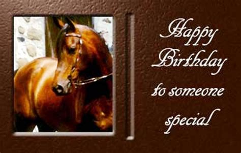 birthday wishes  horse page