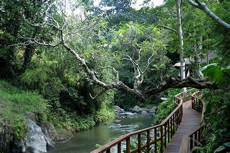 Indonesia attractions: Ubud Bali