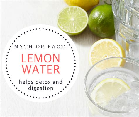 Detox Water For Digestion by The About Lemon Water On Digestion And Detoxification