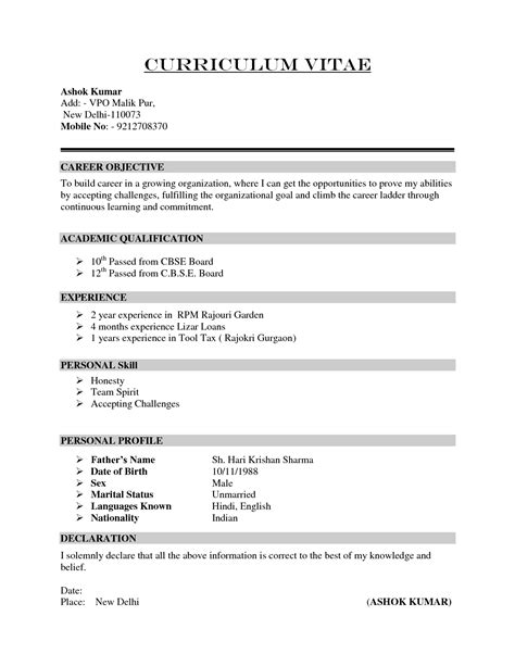 How To Make Professional Cv Format by How To Make Professional Cv Format Letters Free Sle