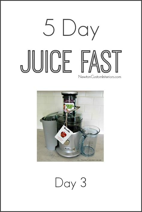 the 5 day juicing diet a plant based program to achieve lasting weight loss term health books 5 day juice fast day 3 newton custom interiors